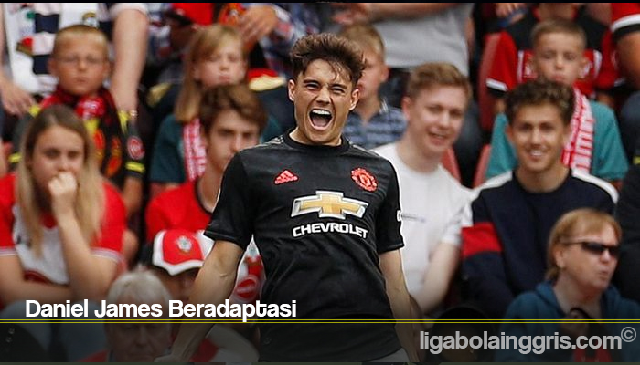 Daniel James Beradaptasi